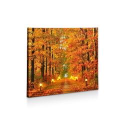 Mediashopping - Quadro luminoso con stampa di bosco autunnale su tela canvas