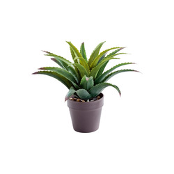 Mediashopping - Aloe artificiale in vaso